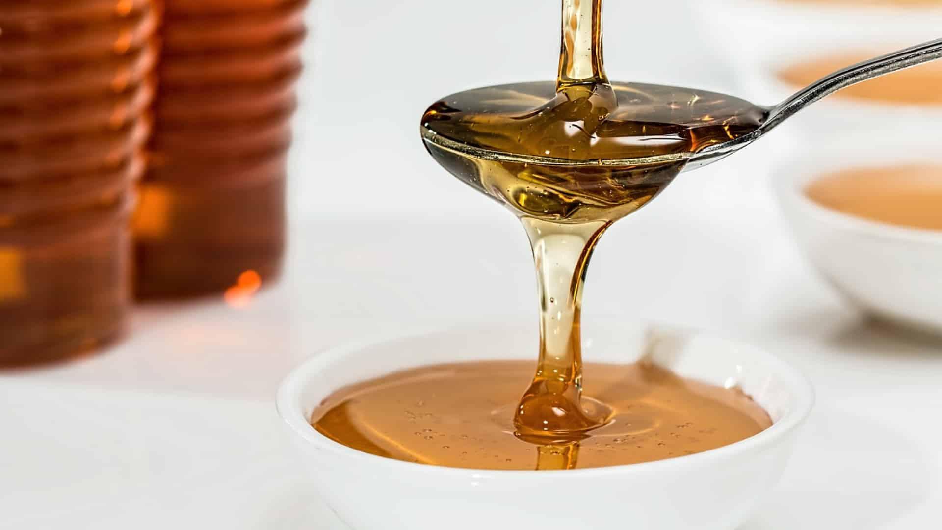 A la découverte du savoureux miel de jujubier