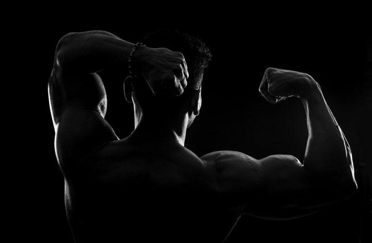 Les compléments Brutal Force : unique alternative aux stéroïdes